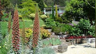 COMPLETED: April 13 & 14 - Open Garden in Warburton 'Redwoods Garden'