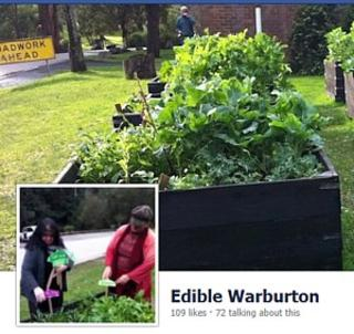 COMPLETED: August 25 at 11:00am - Edible Warburton - Working Bee