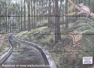 O'Shannassy Aquadeuct, Lyrebird & Leadbeater Possum - Sponsor: Arrabri Lodge. History by Robin Fisher.