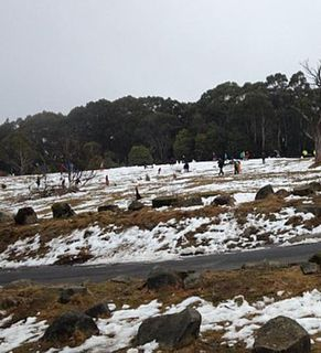Patchy sightseeing snow on Mt Donna Buang