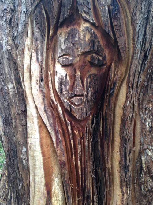 Yuonga Road Wood Sculpture
