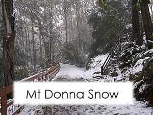 Images of snow on Mt Donna Buang