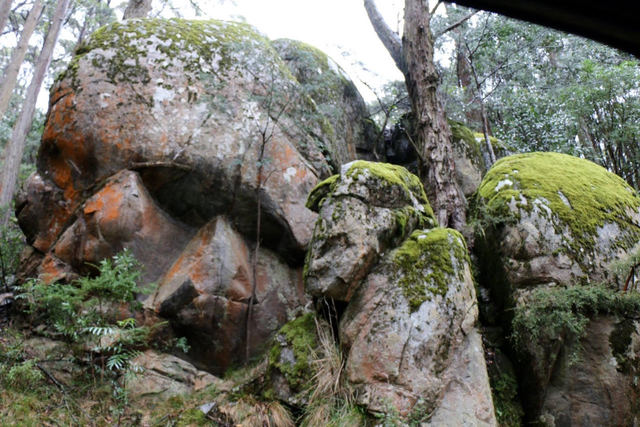 Skull rocks on Mt Donna Buang? Posted 9 May 2016