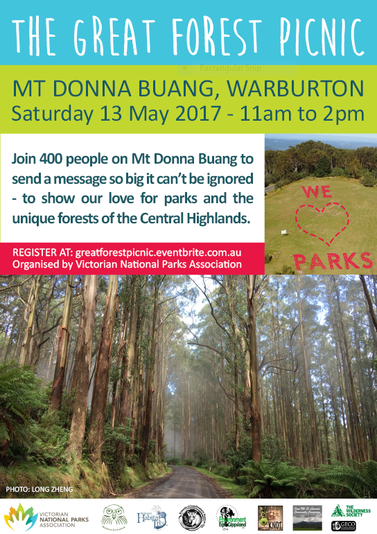 Great Forest Picnic Warburton Mt Donna Buang