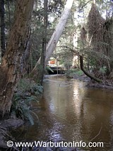 Photo of Big Pats Creek