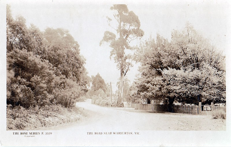 The road near Warburton Vic - The Rose Series Postcard 3539