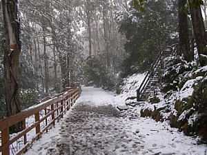 Snow on Mt Donna